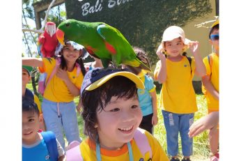 Bali Bird Park 2019